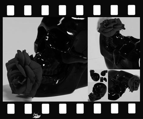 Mred rose160525.jpg