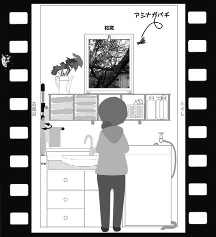Msakura160406-1.jpg