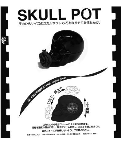 Mskull pot160527-1.jpg